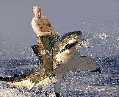 Владимир Путин теряет имидж. Западная пресса обратила внимание на карикатуры с его участием